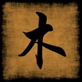 wood-chinese-element-character
